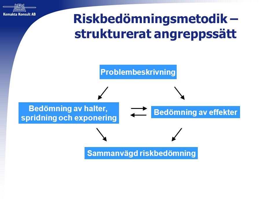 Riskbedömningsmetodik – strukturerat angreppssätt