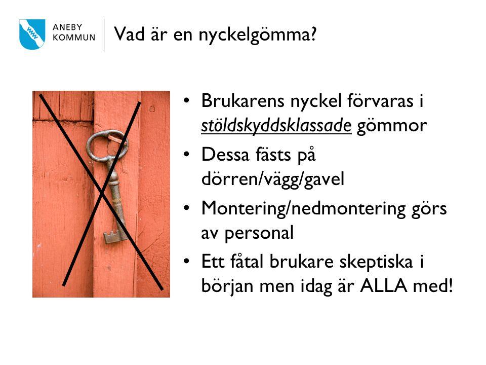Vad är en nyckelgömma Brukarens nyckel förvaras i stöldskyddsklassade gömmor. Dessa fästs på dörren/vägg/gavel.