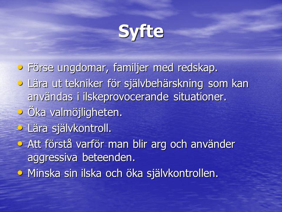 Syfte Förse ungdomar, familjer med redskap.