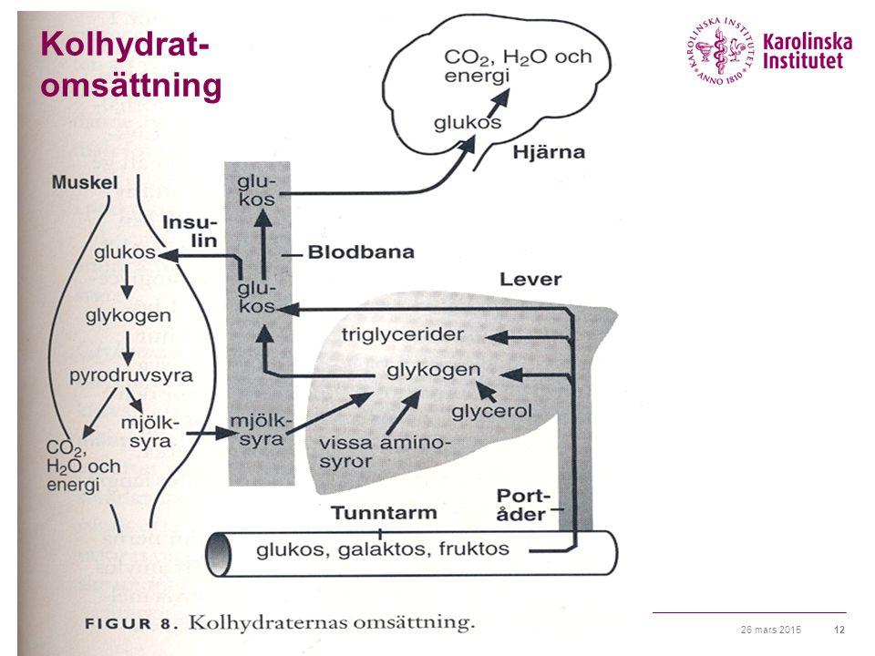Kolhydrat- omsättning