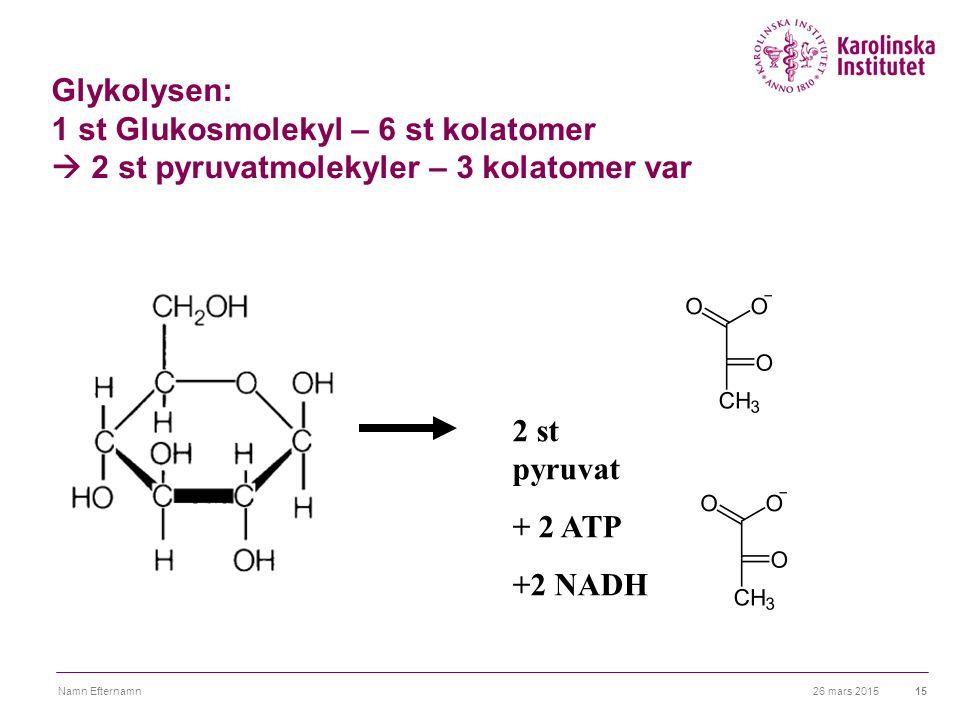 Glykolysen: 1 st Glukosmolekyl – 6 st kolatomer  2 st pyruvatmolekyler – 3 kolatomer var