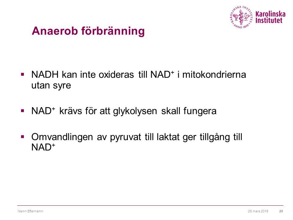 Anaerob förbränning NADH kan inte oxideras till NAD+ i mitokondrierna utan syre. NAD+ krävs för att glykolysen skall fungera.