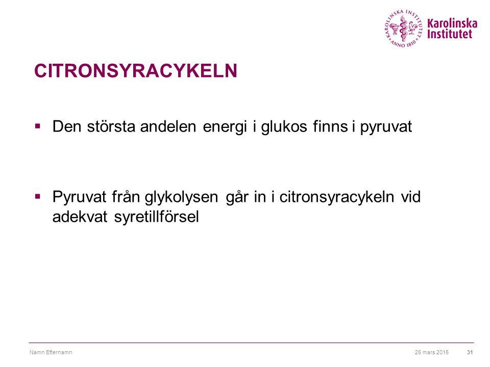CITRONSYRACYKELN Den största andelen energi i glukos finns i pyruvat