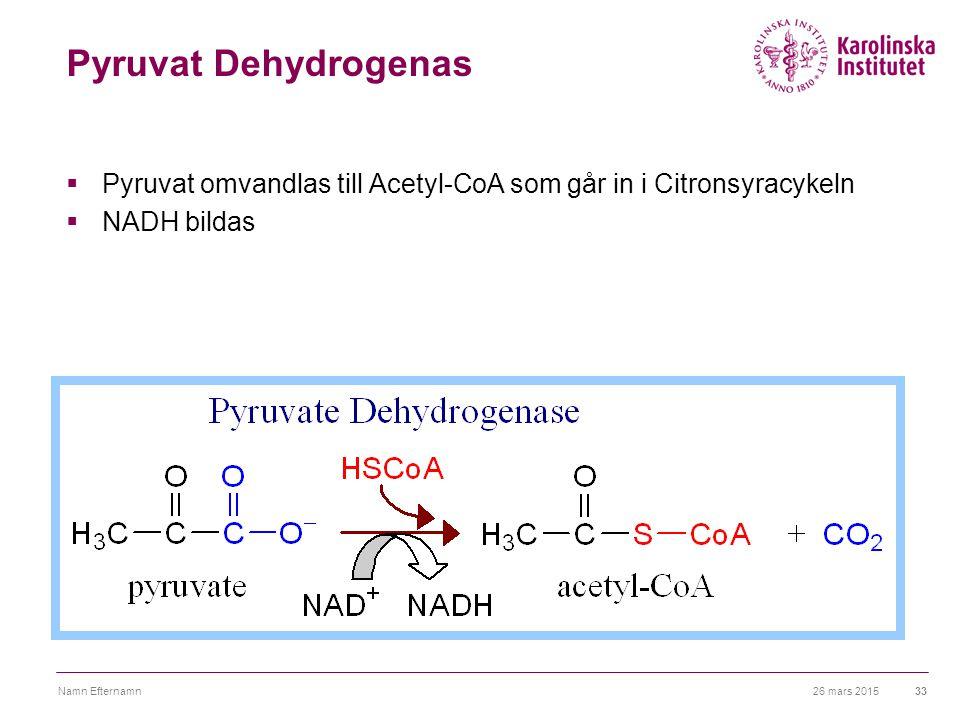 Pyruvat Dehydrogenas Pyruvat omvandlas till Acetyl-CoA som går in i Citronsyracykeln. NADH bildas.
