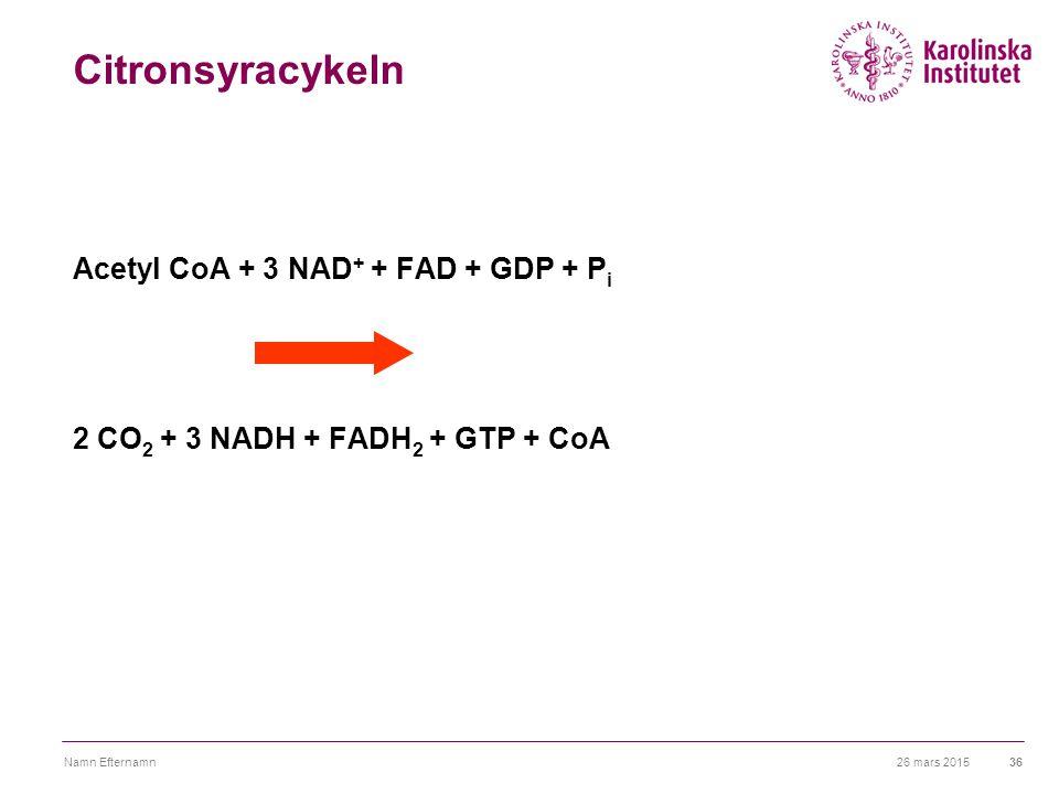 Citronsyracykeln Acetyl CoA + 3 NAD+ + FAD + GDP + Pi