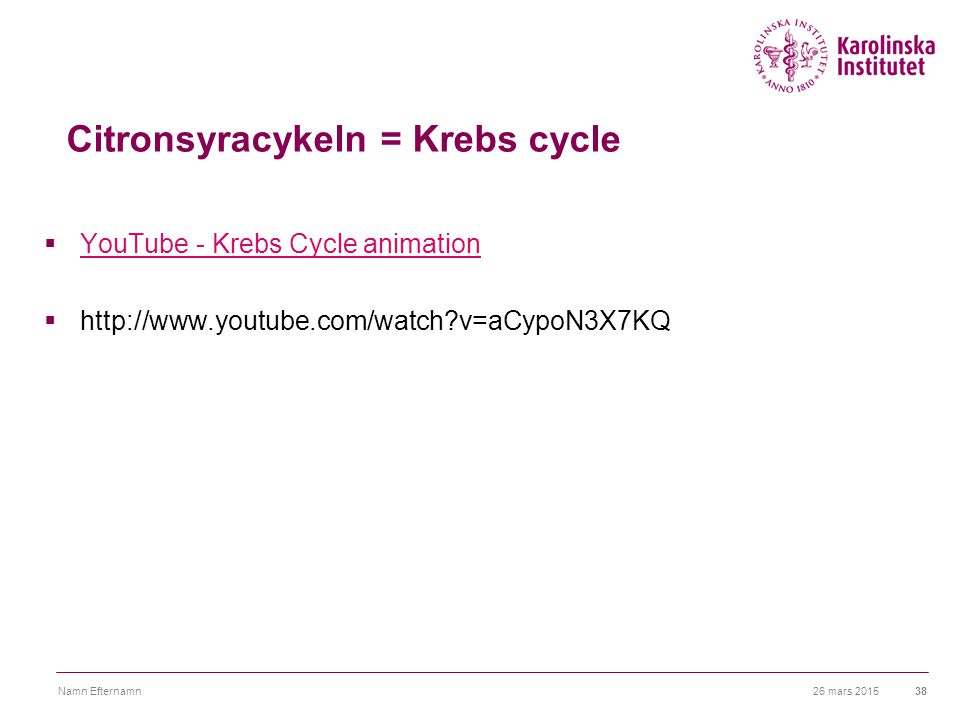 Citronsyracykeln = Krebs cycle