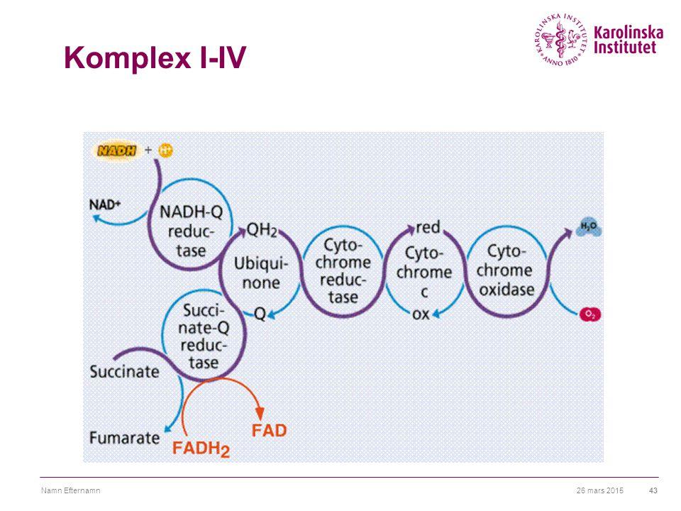 Komplex I-IV