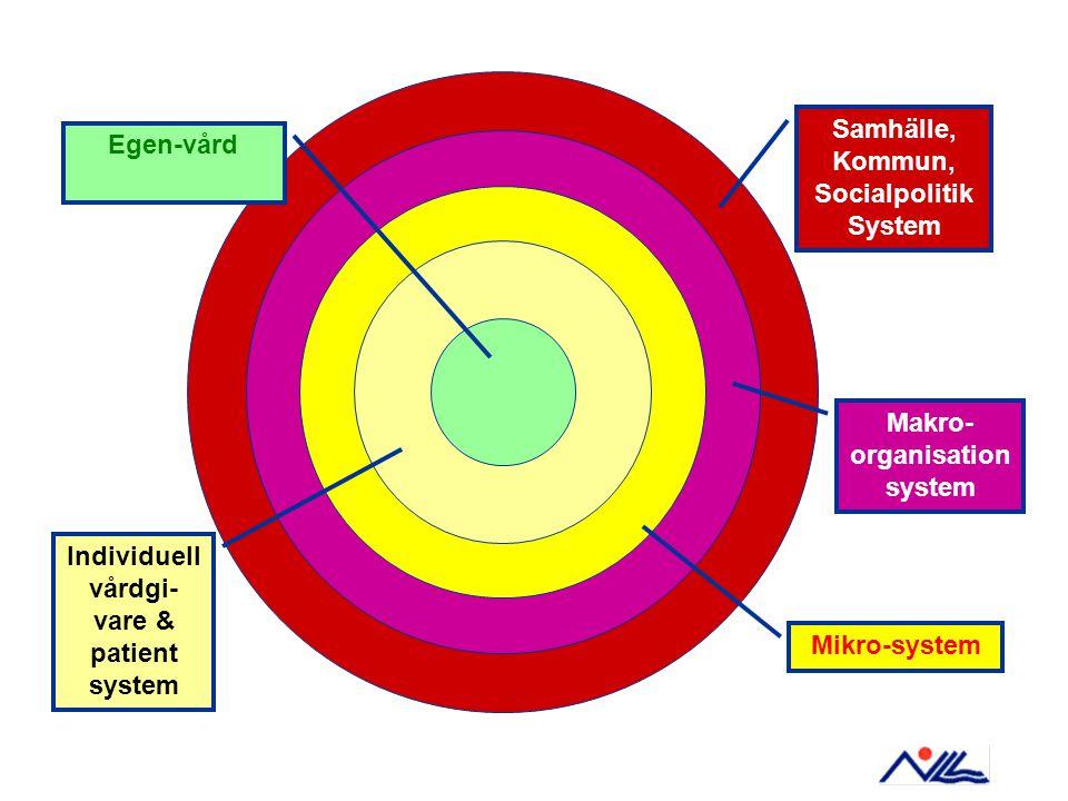 Samhälle, Kommun, Socialpolitik System Makro-organisation system
