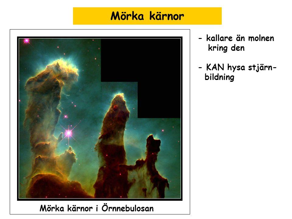 Mörka kärnor - kallare än molnen kring den - KAN hysa stjärn- bildning