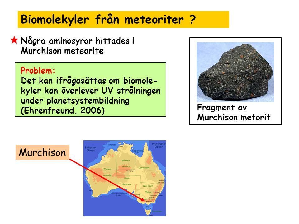 Biomolekyler från meteoriter