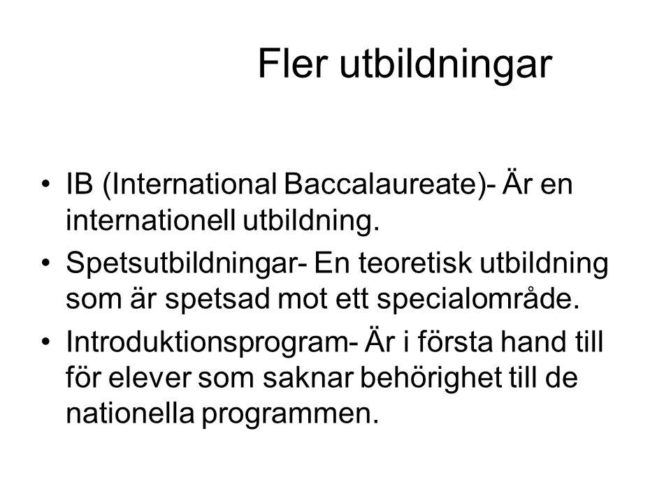 Fler utbildningar IB (International Baccalaureate)- Är en internationell utbildning.