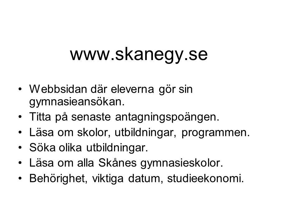 www.skanegy.se Webbsidan där eleverna gör sin gymnasieansökan.