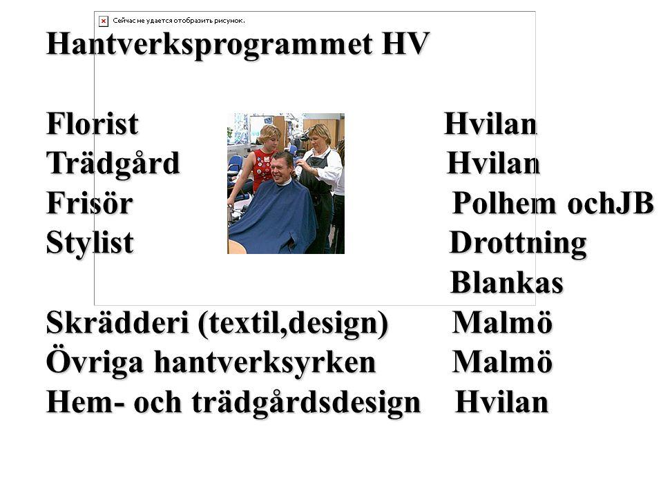 Hantverksprogrammet HV