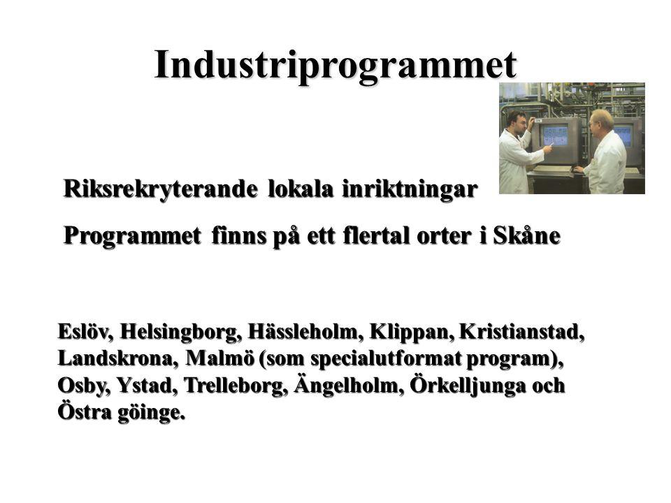 Industriprogrammet Riksrekryterande lokala inriktningar