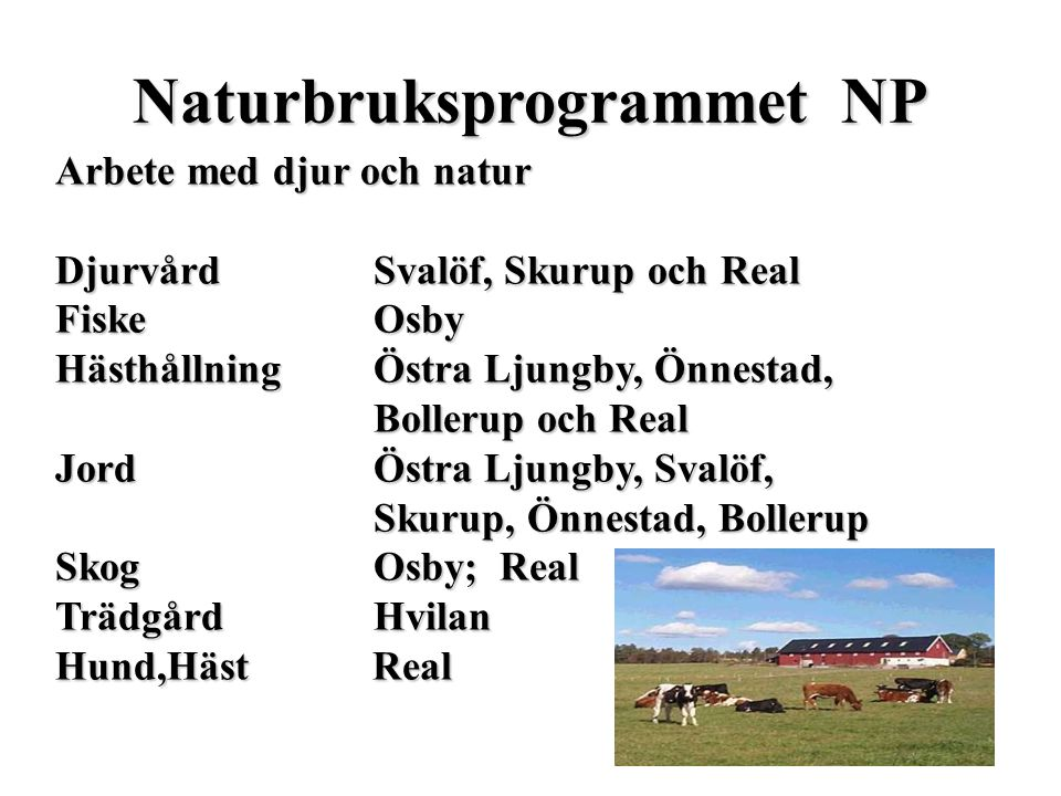 Naturbruksprogrammet NP