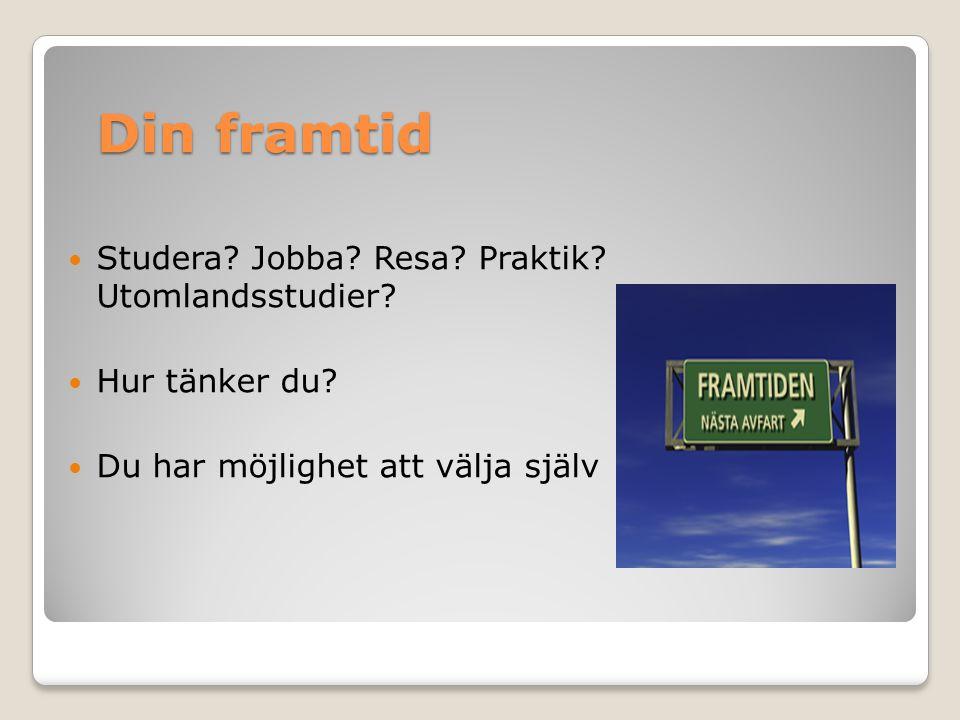 Din framtid Studera Jobba Resa Praktik Utomlandsstudier