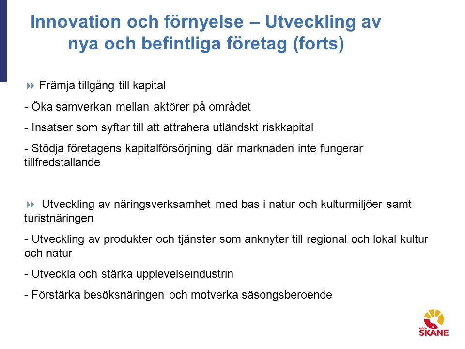 Innovation och förnyelse – Utveckling av nya och befintliga företag (forts)