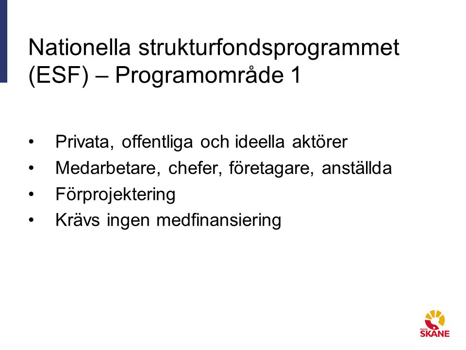Nationella strukturfondsprogrammet (ESF) – Programområde 1