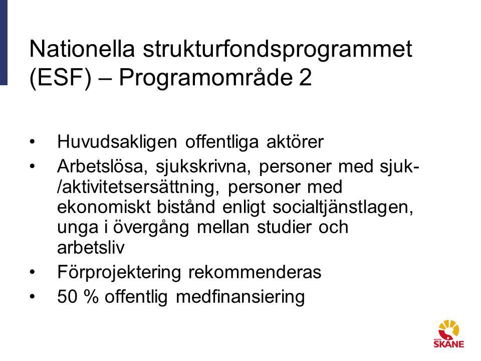 Nationella strukturfondsprogrammet (ESF) – Programområde 2