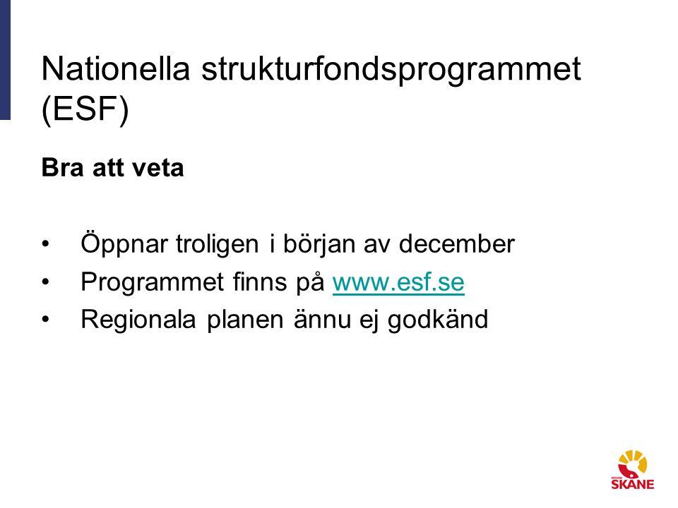 Nationella strukturfondsprogrammet (ESF)