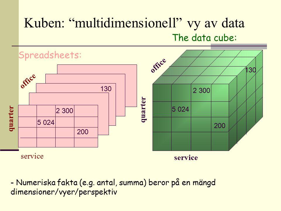 Kuben: multidimensionell vy av data