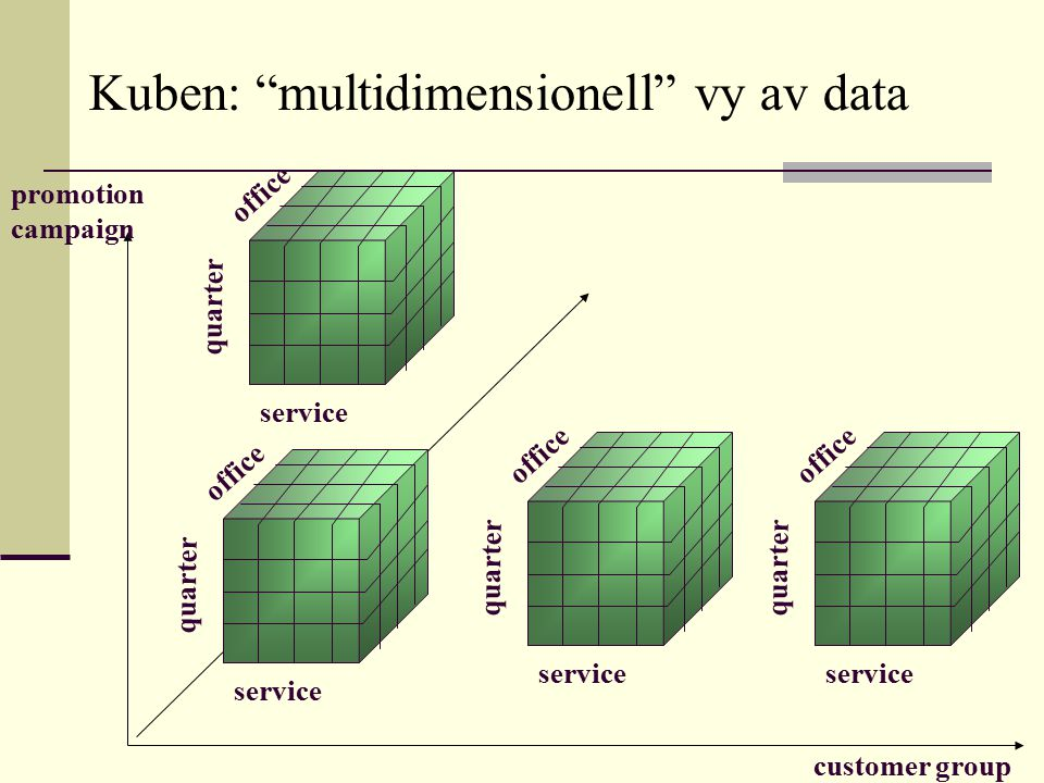 Kuben: multidimensionell vy av data