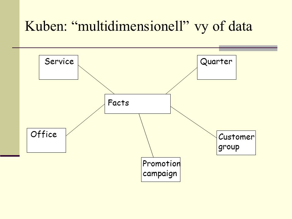 Kuben: multidimensionell vy of data