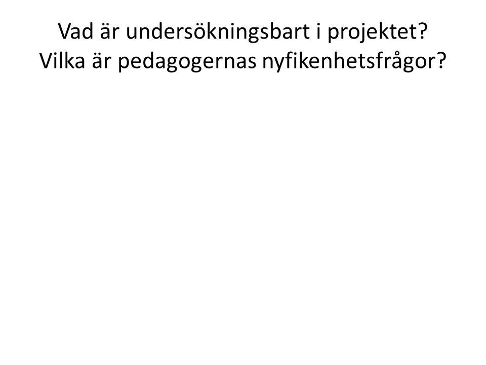 Vad är undersökningsbart i projektet