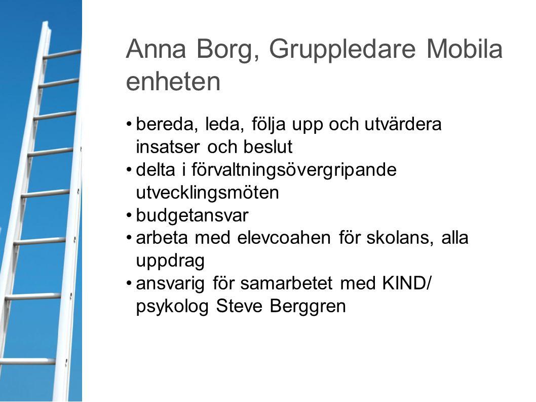Anna Borg, Gruppledare Mobila enheten