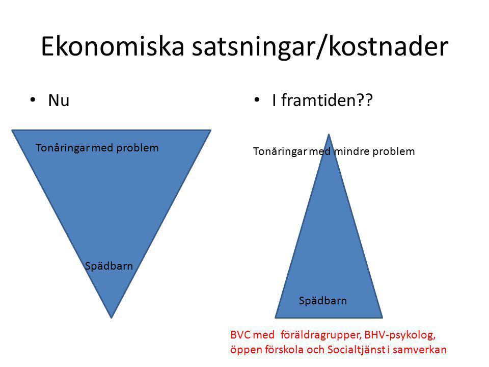 Ekonomiska satsningar/kostnader