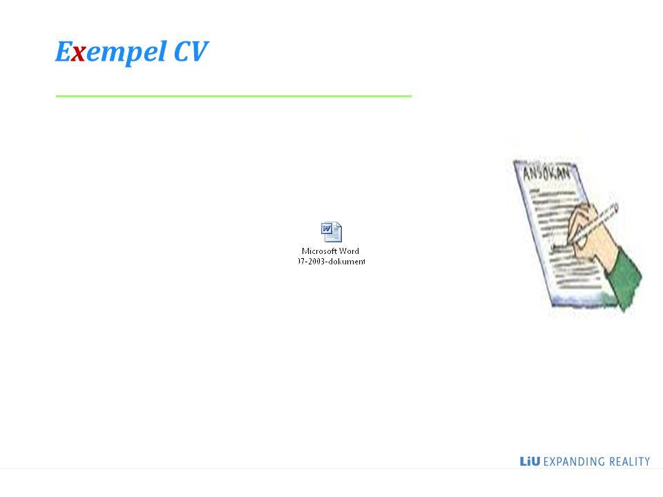 Exempel CV _____________________________________ 2017-04-08