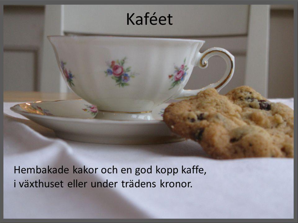 Kaféet Hembakade kakor och en god kopp kaffe,