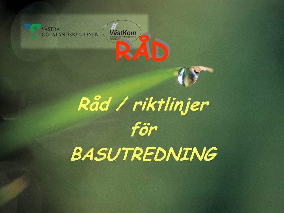 RÅD Råd / riktlinjer för BASUTREDNING