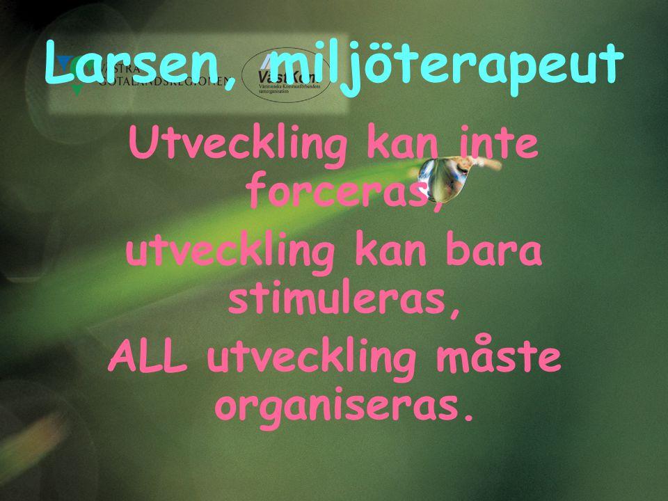 Larsen, miljöterapeut Utveckling kan inte forceras,