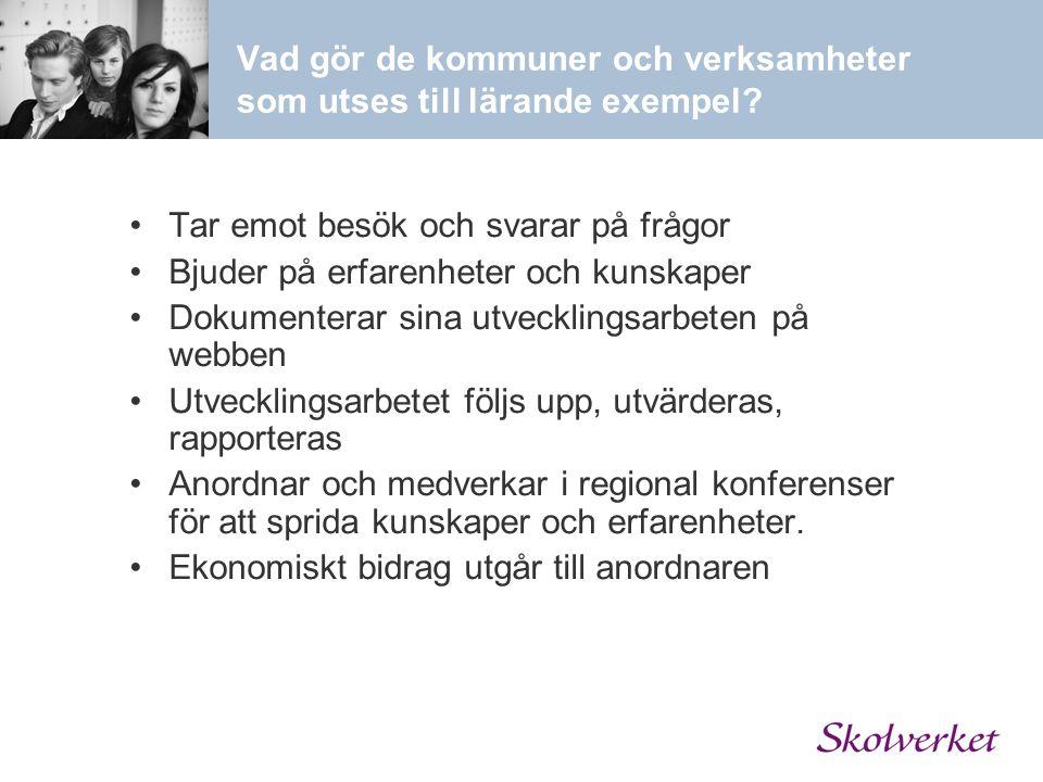Vad gör de kommuner och verksamheter som utses till lärande exempel