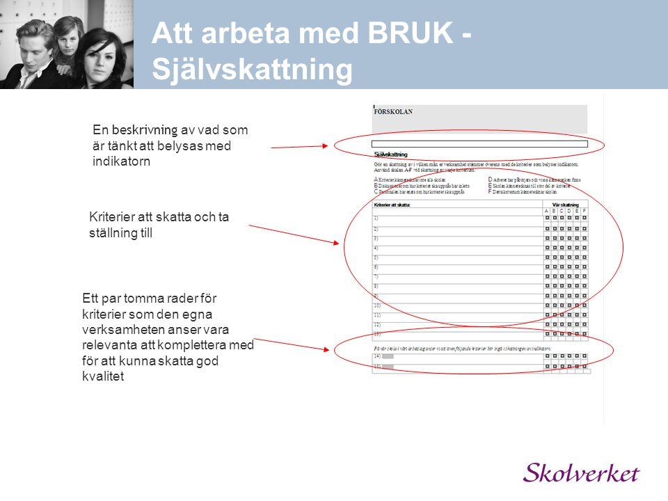 Att arbeta med BRUK - Självskattning