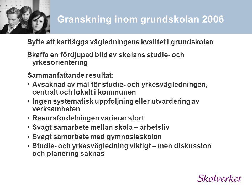 Granskning inom grundskolan 2006