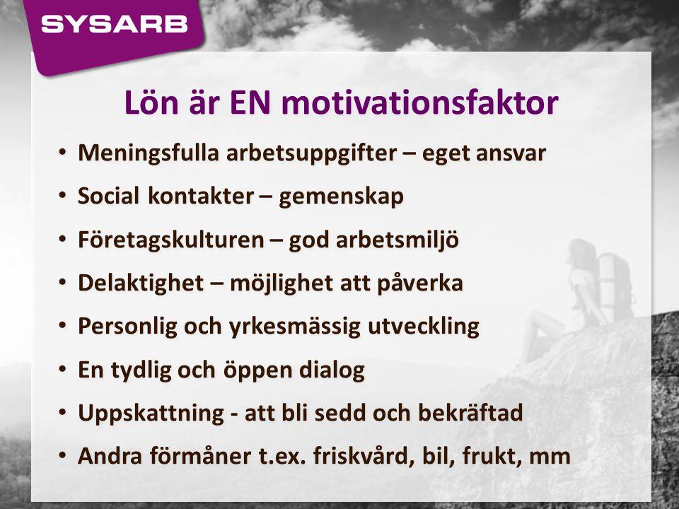 Lön är EN motivationsfaktor
