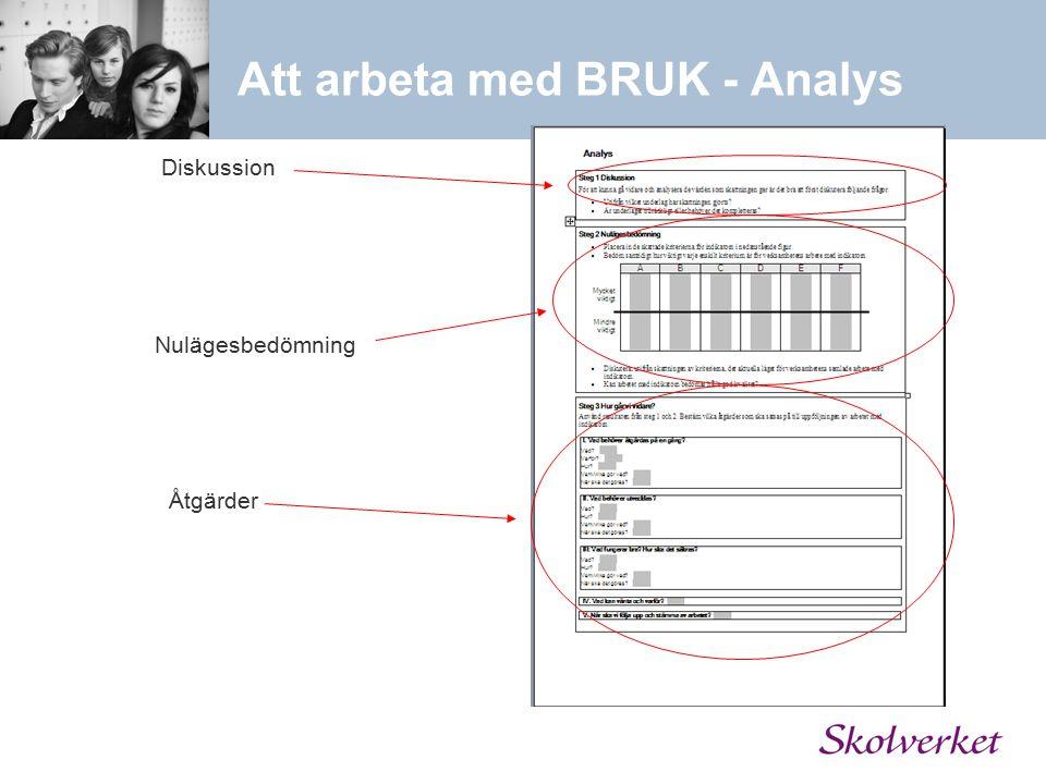 Att arbeta med BRUK - Analys