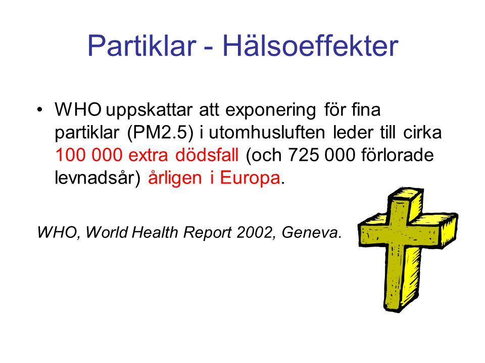 Partiklar - Hälsoeffekter