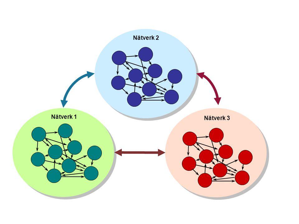 Nätverk 2 Nätverk 1 Nätverk 3