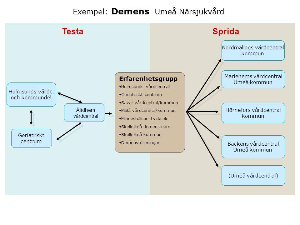 Testa Sprida Exempel: Demens Umeå Närsjukvård Erfarenhetsgrupp