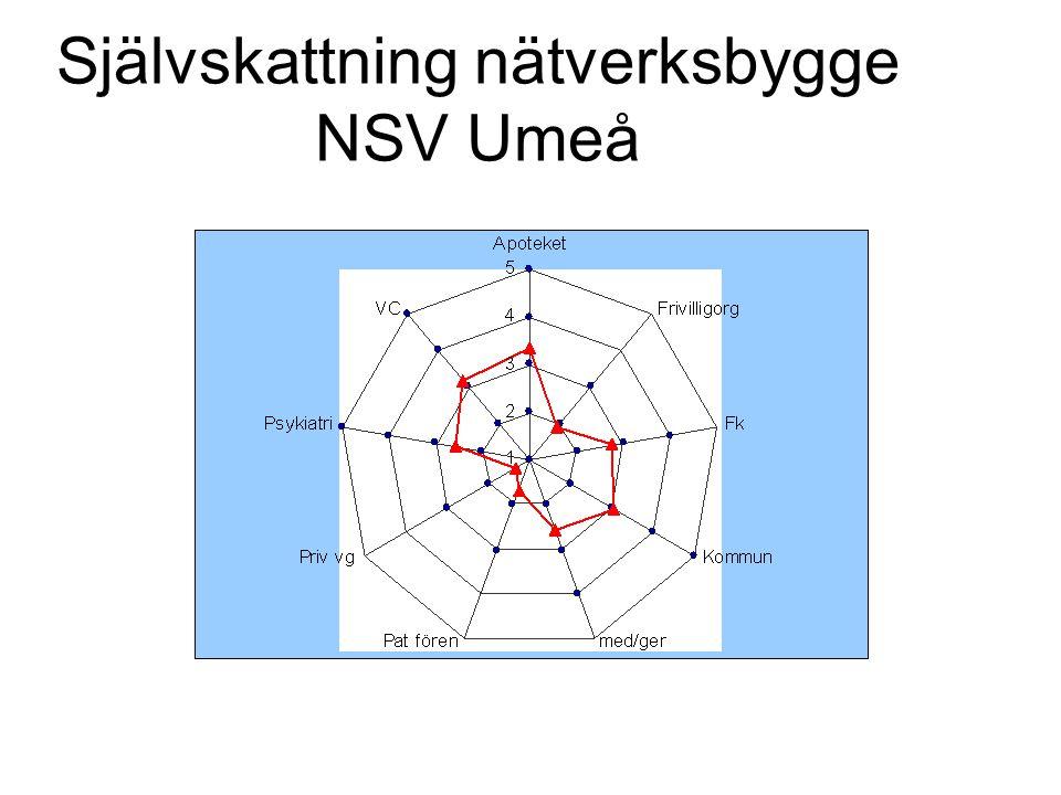 Självskattning nätverksbygge NSV Umeå