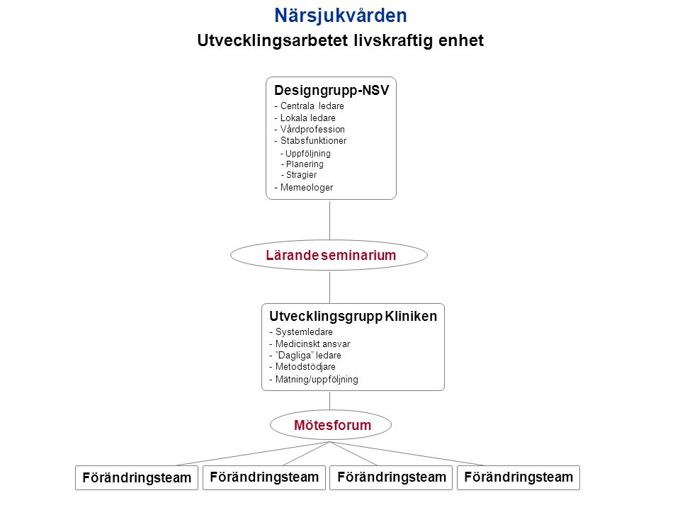 Närsjukvården Utvecklingsarbetet livskraftig enhet Designgrupp-NSV