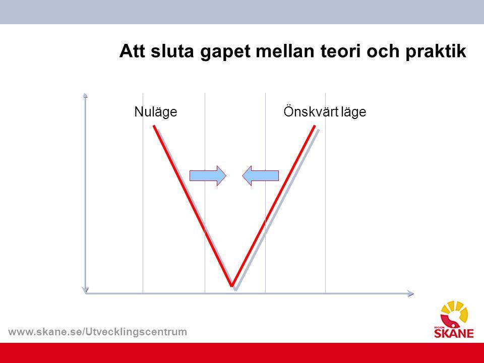 Att sluta gapet mellan teori och praktik