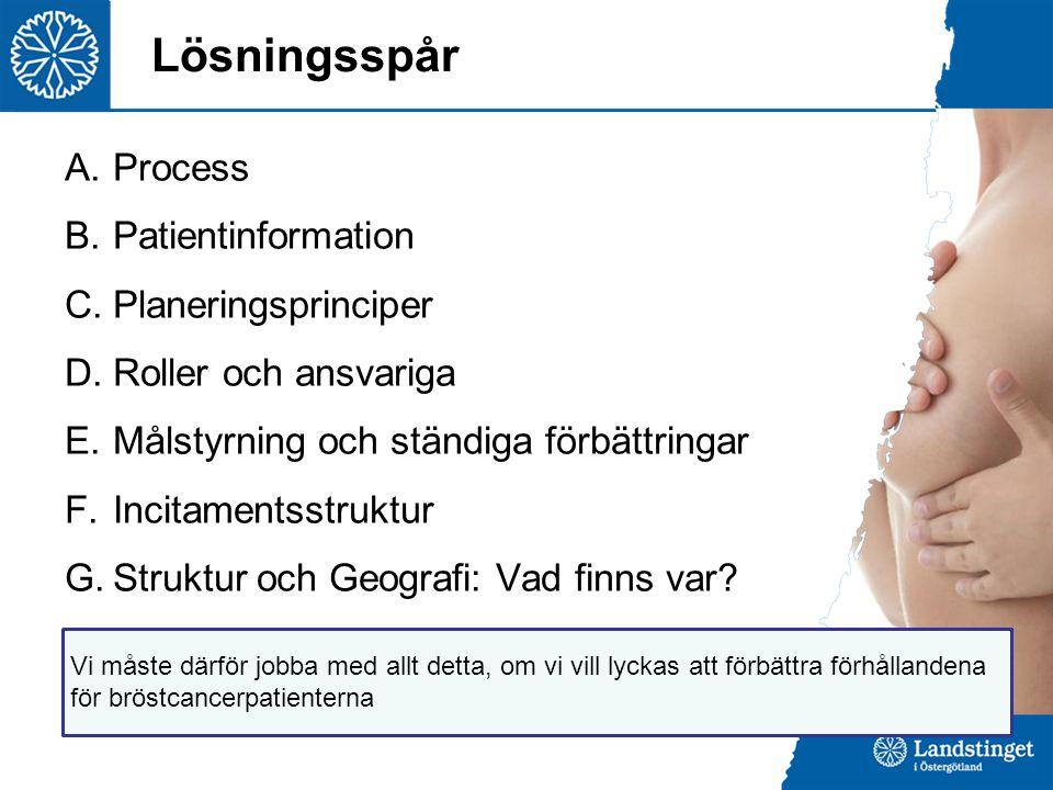 Lösningsspår Process Patientinformation Planeringsprinciper