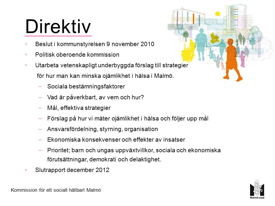 Direktiv Beslut i kommunstyrelsen 9 november 2010