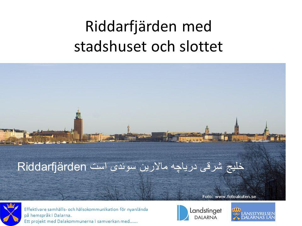 Riddarfjärden med stadshuset och slottet