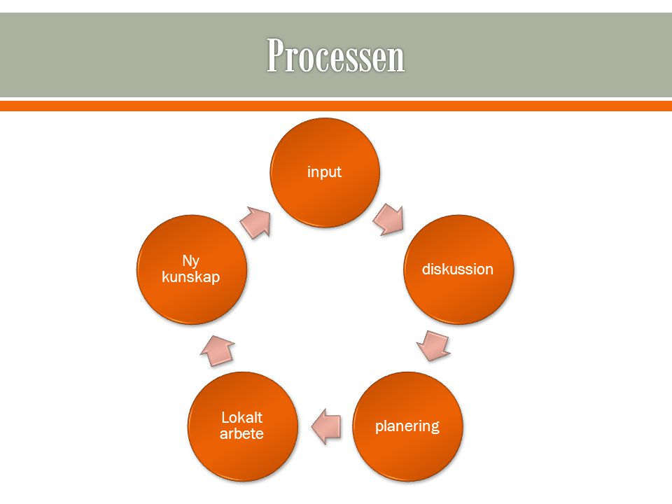 Processen input diskussion planering Lokalt arbete Ny kunskap