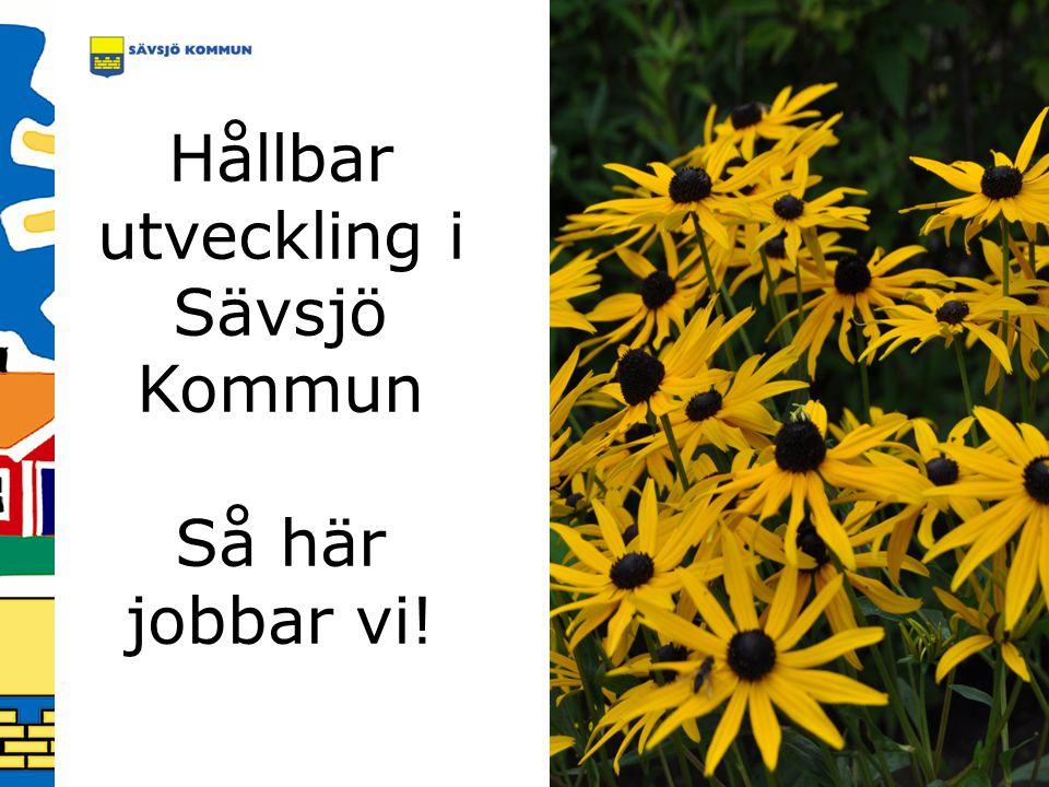 Hållbar utveckling i Sävsjö Kommun